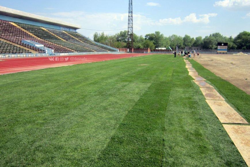 На стадионе «Чернигов» продолжается укладка нового газона. ФОТО, фото-6