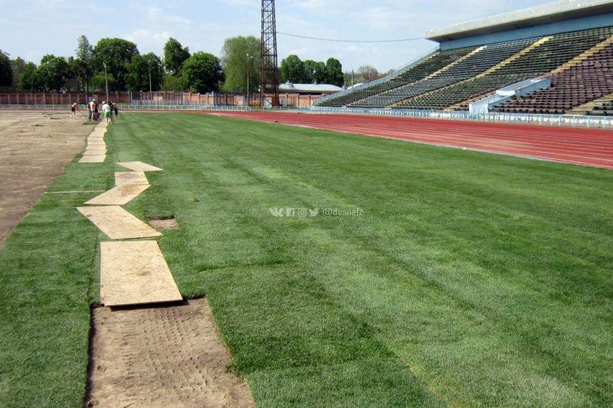 На стадионе «Чернигов» продолжается укладка нового газона. ФОТО, фото-3