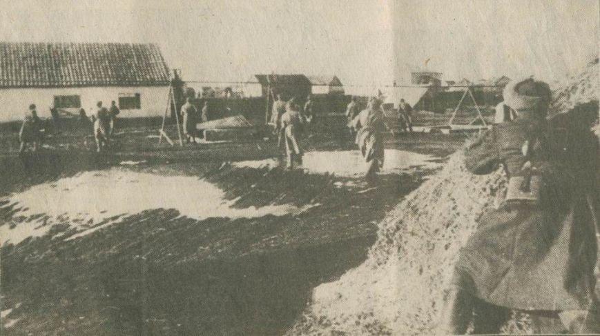 8 мая отмечается День памяти и примирения, посвященный памяти жертв Второй мировой войны, фото-1