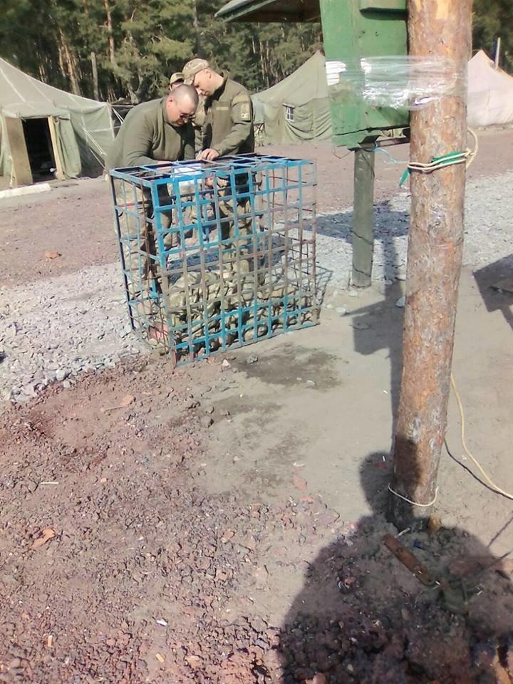 """Командование 54-й бригады обещает разобраться с """"заточением"""" бойца в клетку (ФОТО), фото-2"""