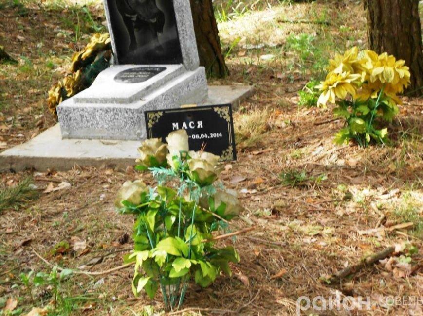 На Волині створили кладовище чотирилапих біля людських городів та автомагістралі (ФОТО), фото-9