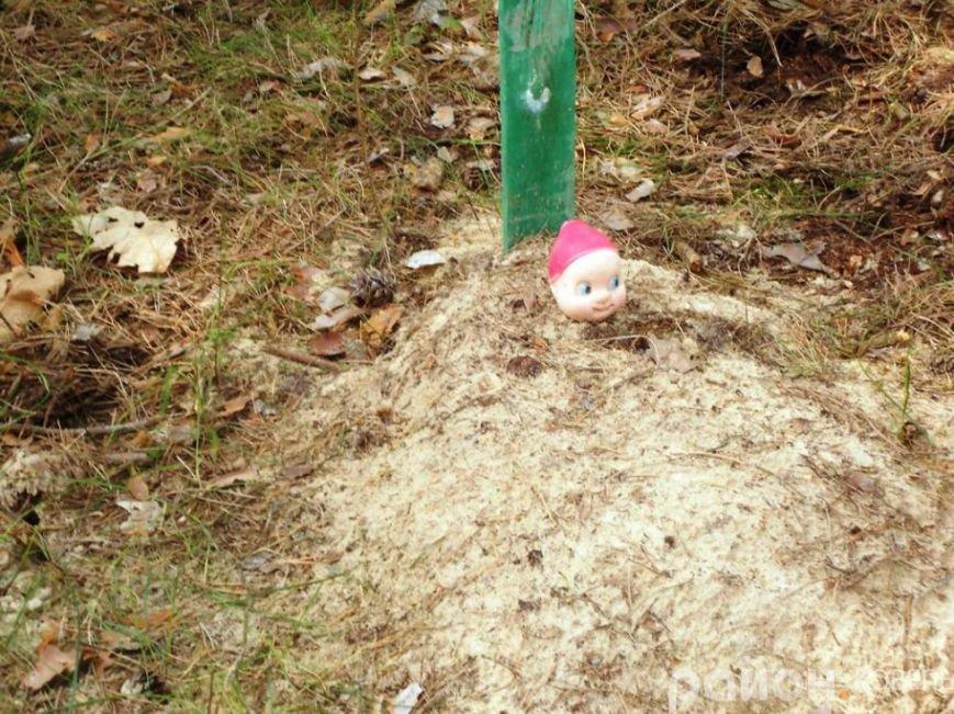 На Волині створили кладовище чотирилапих біля людських городів та автомагістралі (ФОТО), фото-10