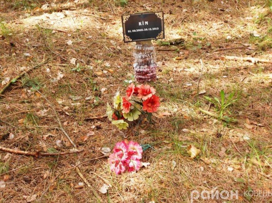 На Волині створили кладовище чотирилапих біля людських городів та автомагістралі (ФОТО), фото-5