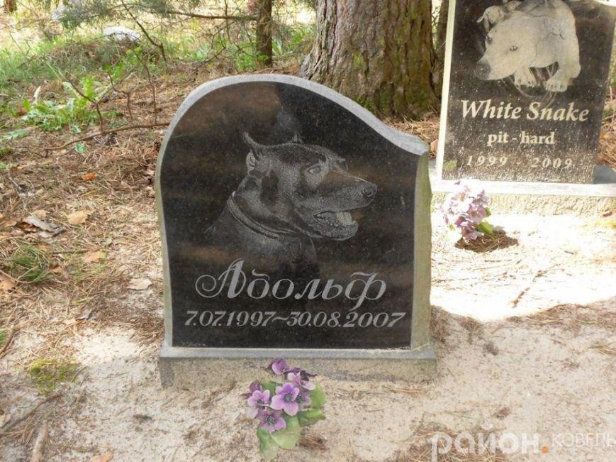 На Волині створили кладовище чотирилапих біля людських городів та автомагістралі (ФОТО), фото-2
