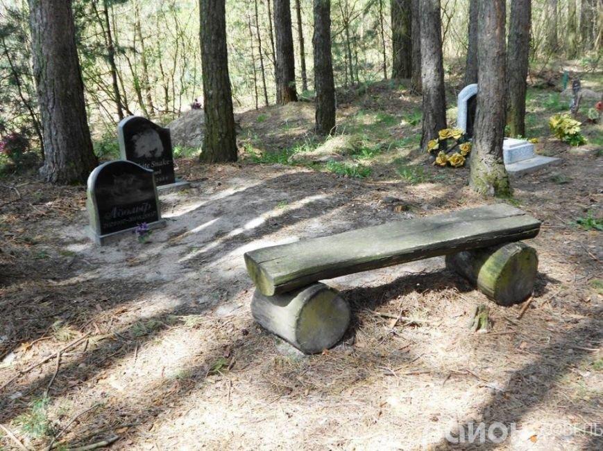 На Волині створили кладовище чотирилапих біля людських городів та автомагістралі (ФОТО), фото-8