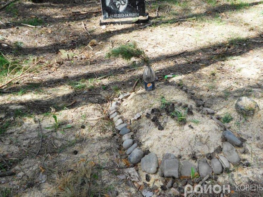 На Волині створили кладовище чотирилапих біля людських городів та автомагістралі (ФОТО), фото-6