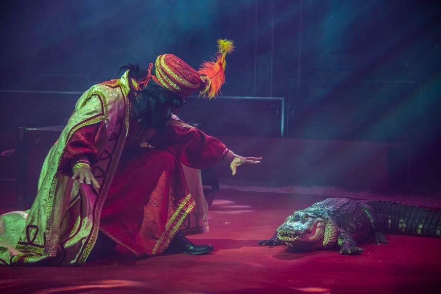 Всемирно известный цирк «Кобзов» опять порадует жителей Покровска незабываемым шоу мирового уровня «Цирк Италии»!, фото-5