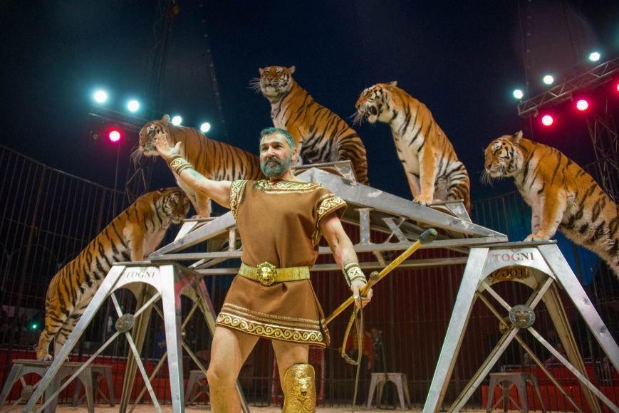 Всемирно известный цирк «Кобзов» опять порадует жителей Покровска незабываемым шоу мирового уровня «Цирк Италии»!, фото-4