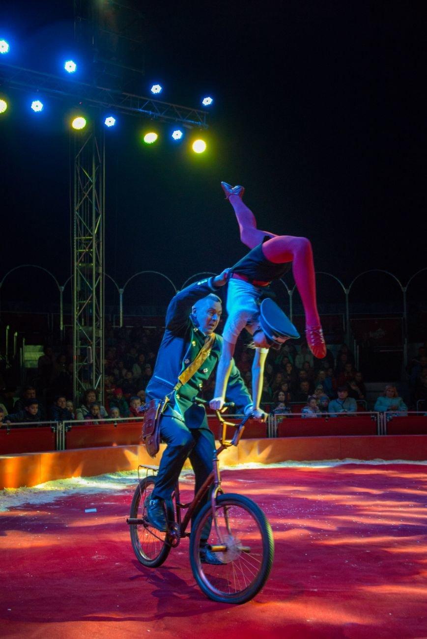 Всемирно известный цирк «Кобзов» опять порадует жителей Покровска незабываемым шоу мирового уровня «Цирк Италии»!, фото-2