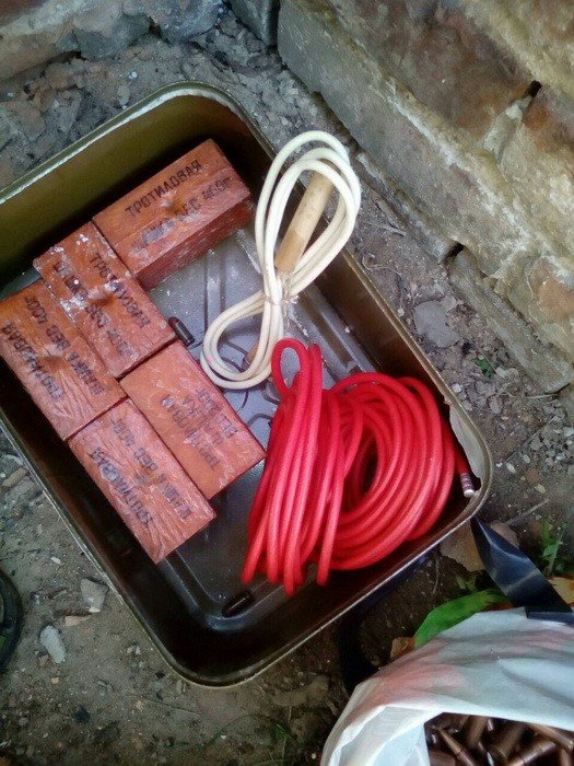 В Донецкой области нашли тайник с гранатами и взрывчаткой (ФОТО), фото-2