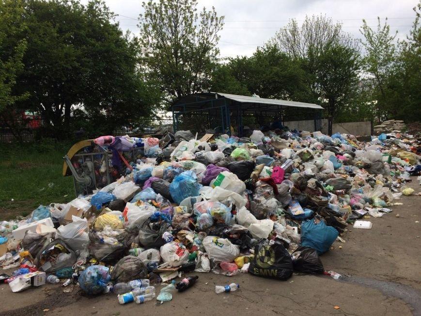 У якому районі Львова найгірша ситуація із вивозом сміття: відео, фото-2