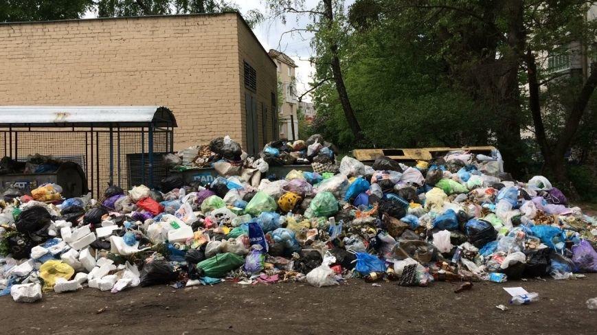 У якому районі Львова найгірша ситуація із вивозом сміття: відео, фото-1