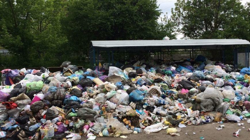 У якому районі Львова найгірша ситуація із вивозом сміття: відео, фото-3