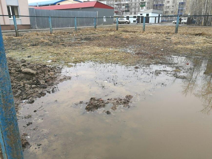 «Воды по колено». Вартовчане обеспокоены состоянием вольера для выгула собак в 4 микрорайоне, фото-1