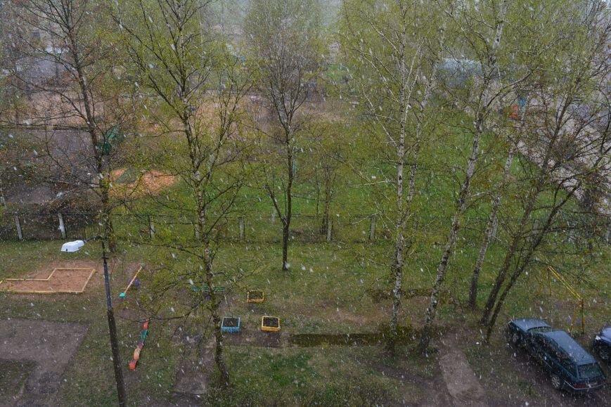 Странная весна. Майские снежинки в Полоцке и Новополоцке – фотофакт, фото-2
