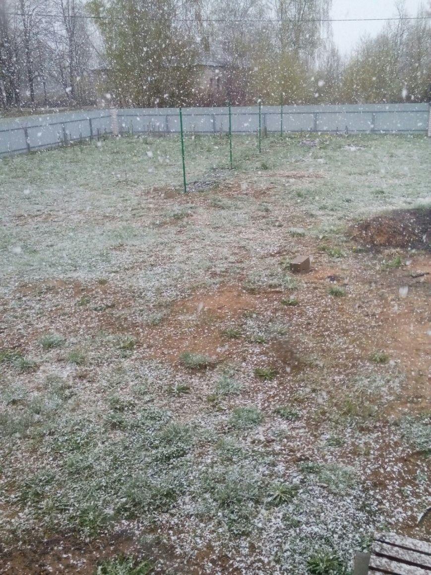 Странная весна. Майские снежинки в Полоцке и Новополоцке – фотофакт, фото-4