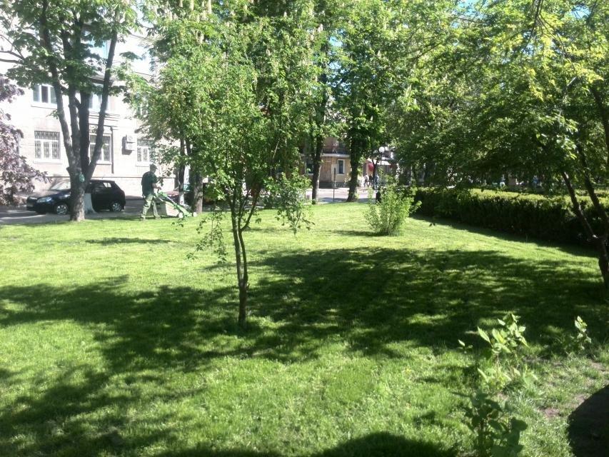 Кременчугские скверы и парки оборудуют средствами видеонаблюдения, фото-5