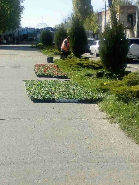 Кременчугские скверы и парки оборудуют средствами видеонаблюдения, фото-1