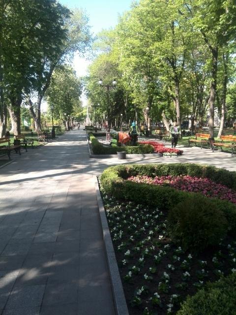 Кременчугские скверы и парки оборудуют средствами видеонаблюдения, фото-3
