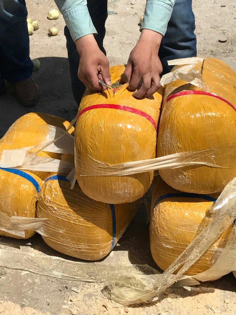 Жители Жамбылской области пытались провезти более 400 кг наркотиков через Актау, фото-2