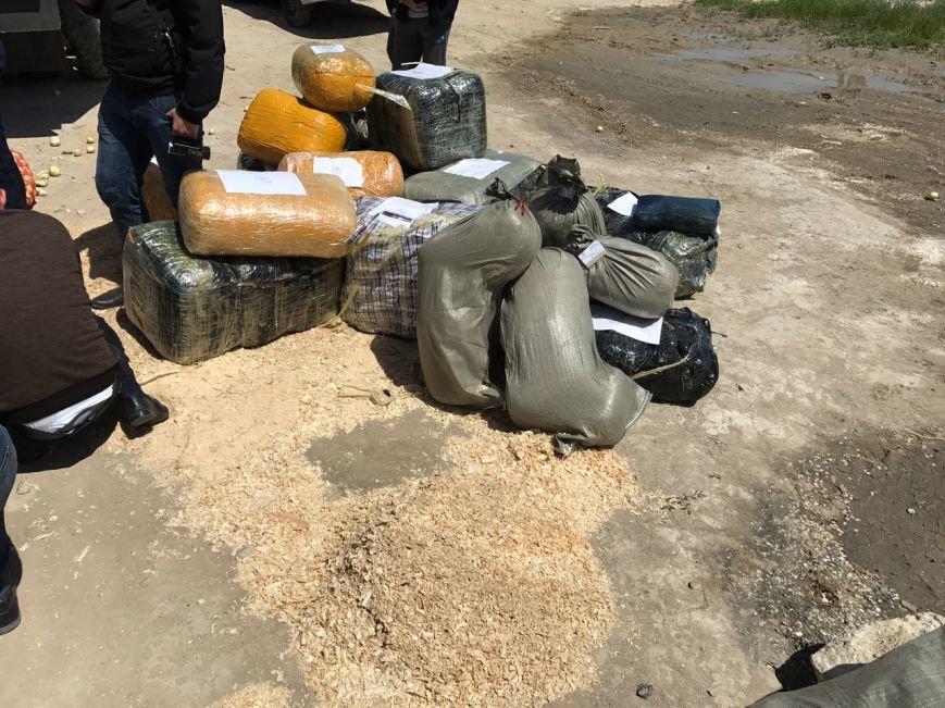 Жители Жамбылской области пытались провезти более 400 кг наркотиков через Актау, фото-3
