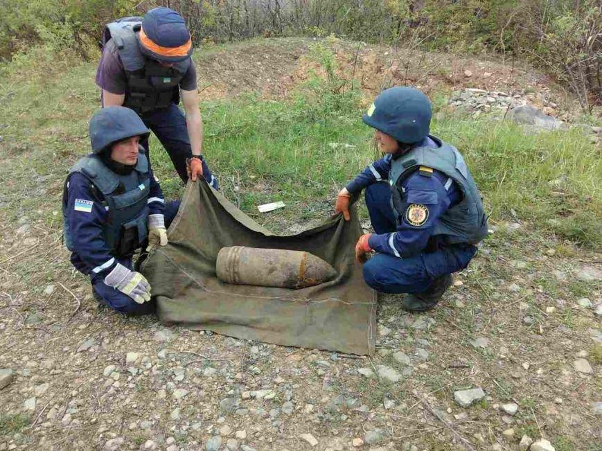 Біля Ужгорода знайшли гранату Ф-1 і 203-міліметровий артилерійський снаряд: фото, фото-1