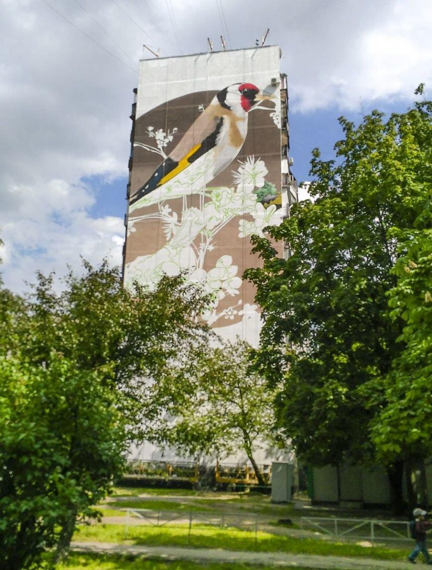 Европейские художники распишут стены харьковских домов (ФОТО), фото-2