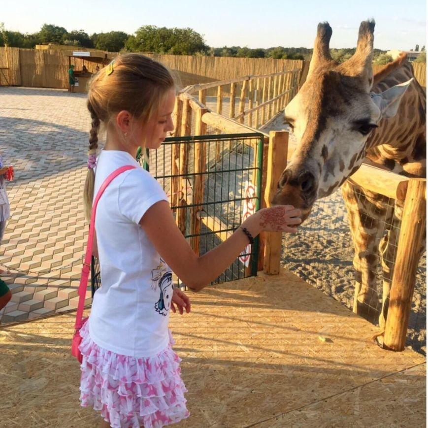 Куда пойти с детьми на выходных в Одессе: ТОП-10 мест (ФОТО), фото-1