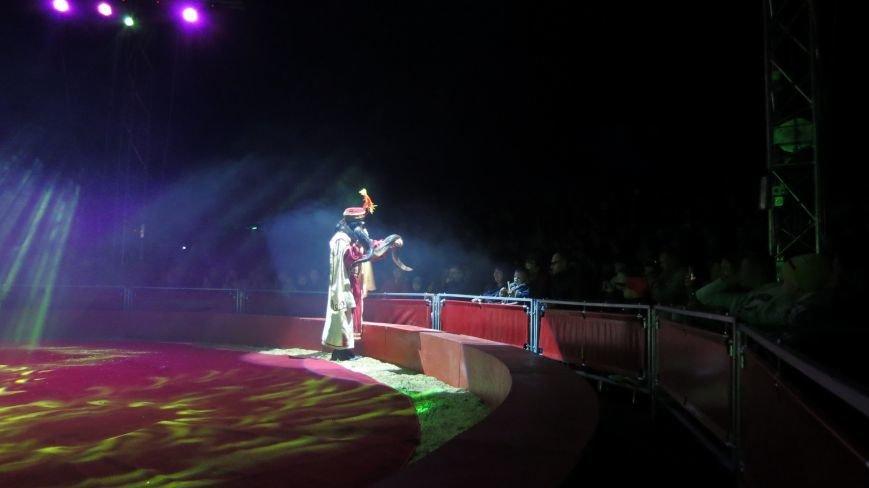 Италия приехала в Покровск: всемирно известный цирк «Кобзов» подарил горожанам 2 часа незабываемых эмоций, фото-35