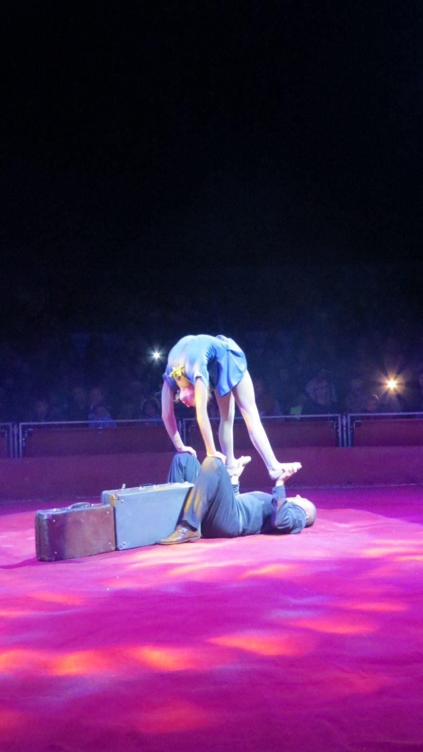 Италия приехала в Покровск: всемирно известный цирк «Кобзов» подарил горожанам 2 часа незабываемых эмоций, фото-30