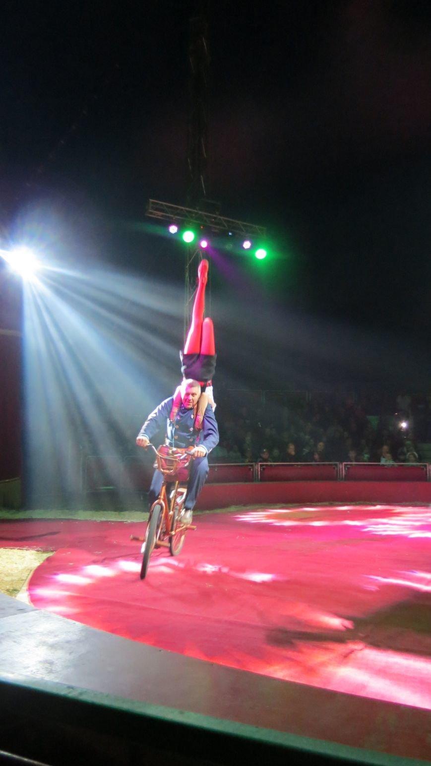 Италия приехала в Покровск: всемирно известный цирк «Кобзов» подарил горожанам 2 часа незабываемых эмоций, фото-31