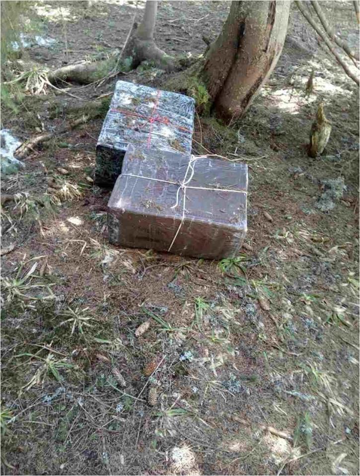 У лісі поблизу кордону прикордонники знайшли 2 чорні ящики із цигарками: фото, фото-1