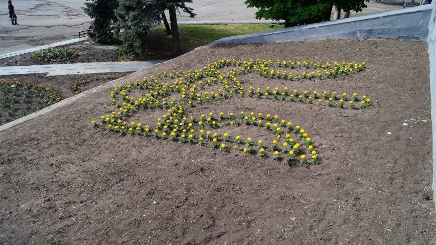 На Соборной площади высадили цветы в виде герба, сердца и флага, фото-3