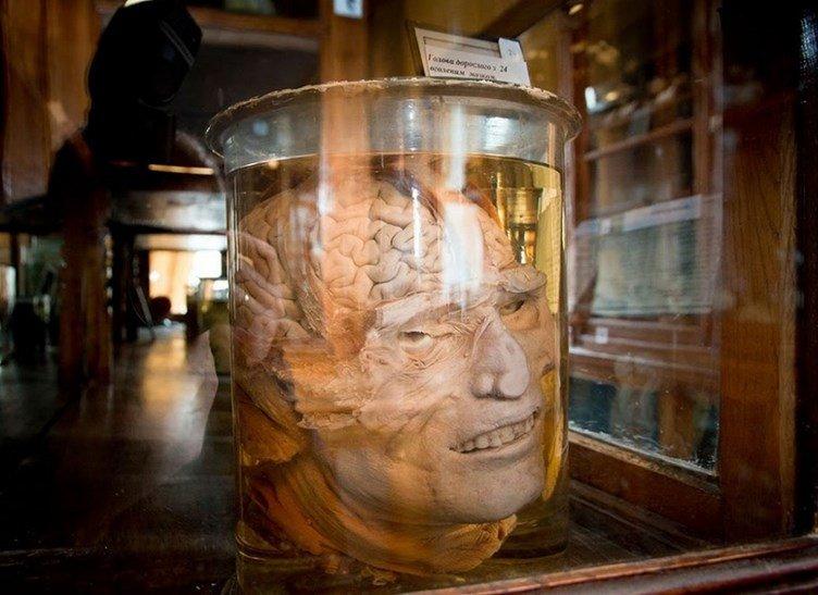 ТОП-5 самых необычных музеев Одессы (ФОТО), фото-2