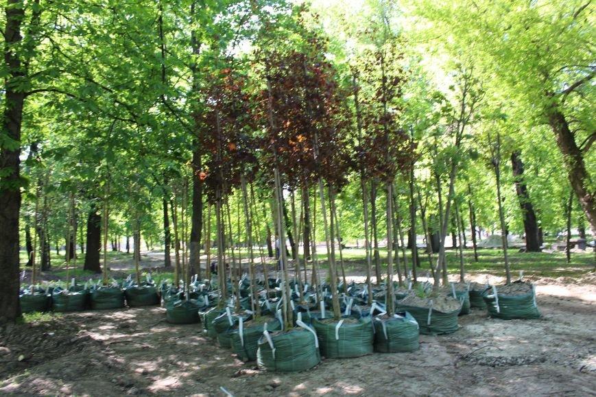 «Незримые» работы в парке Каменского завершаются, фото-12