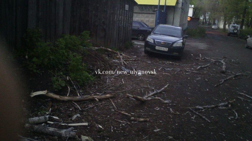 В Заволжье огромный тополь упал на «семерку». ФОТО, фото-4