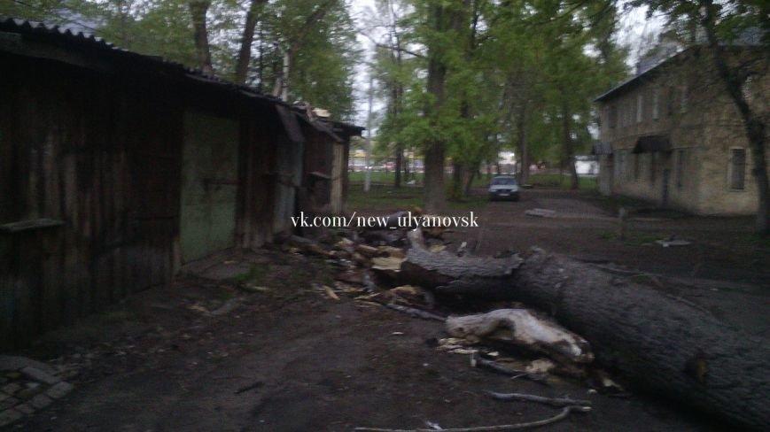 В Заволжье огромный тополь упал на «семерку». ФОТО, фото-5