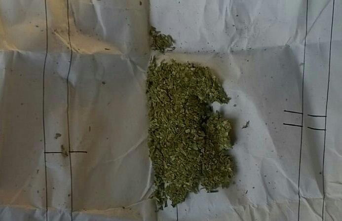 На таможне полицейские остановили жителя Чугуева с наркотиками (ФОТО), фото-2