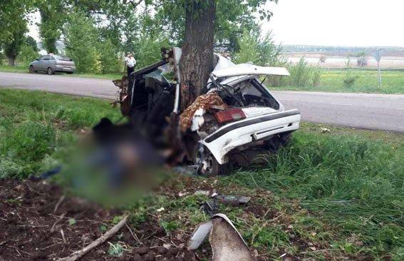 Полиция Донетчины усиливает меры безопасности на дорогах, где за сутки погибли 6 человек, фото-2