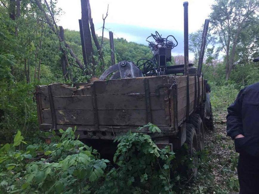 На Харьковщине браконьеры уничтожают дубовые рощи (ФОТО), фото-1