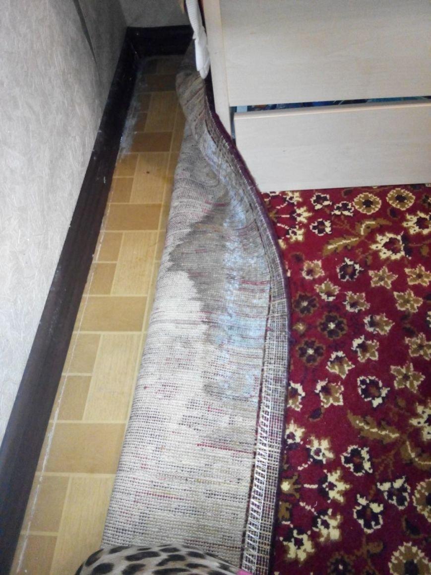 «Холод, запах и отклеенные обои»: квартира вартовчанки покрылась плесенью, фото-2