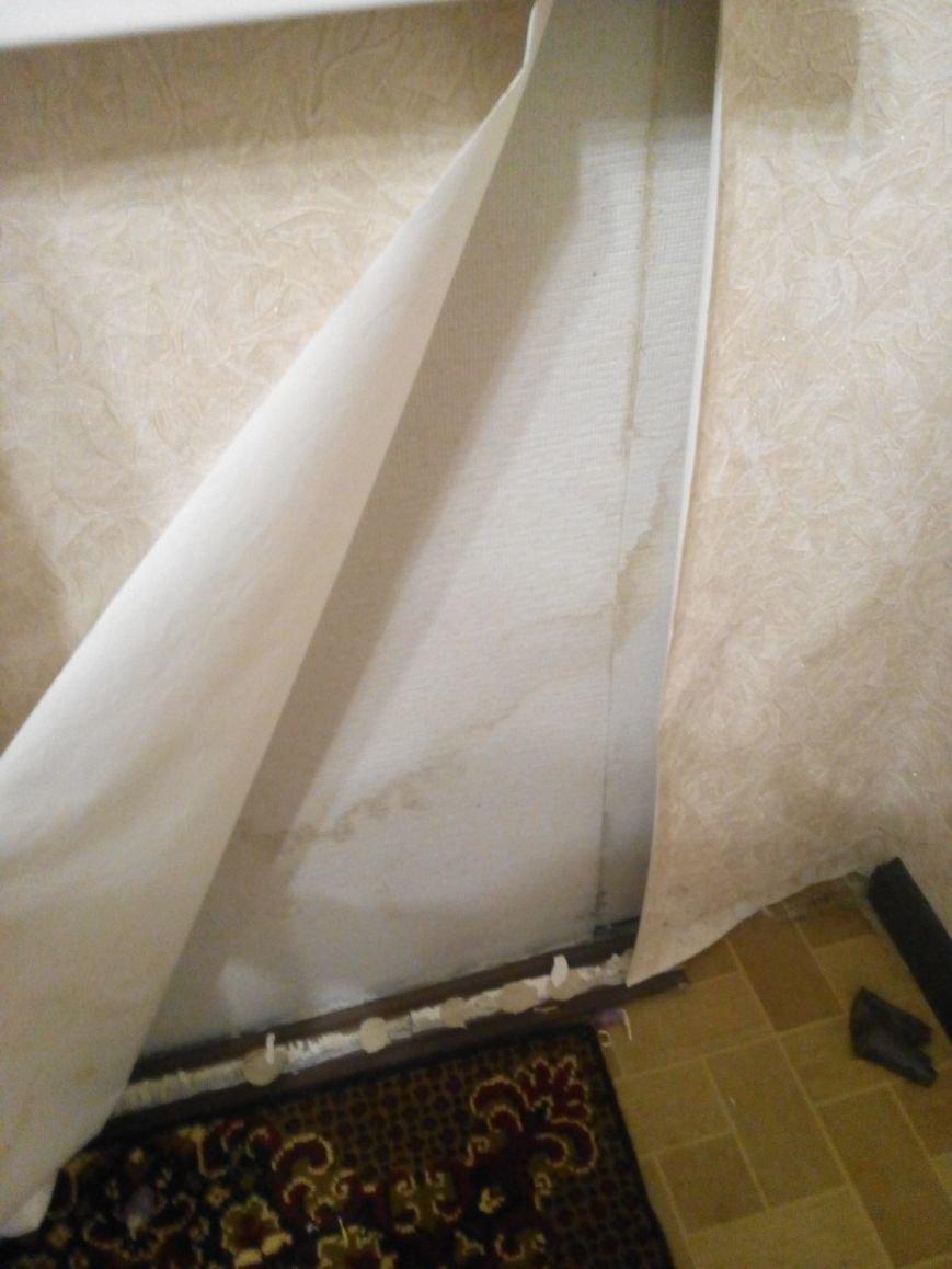 «Холод, запах и отклеенные обои»: квартира вартовчанки покрылась плесенью, фото-4