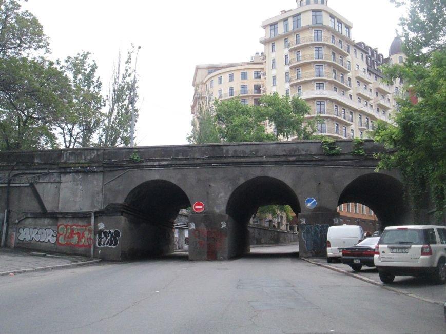 Дерево, которое смогло: На одесском мосту появилась лишняя флора (ФОТО), фото-19