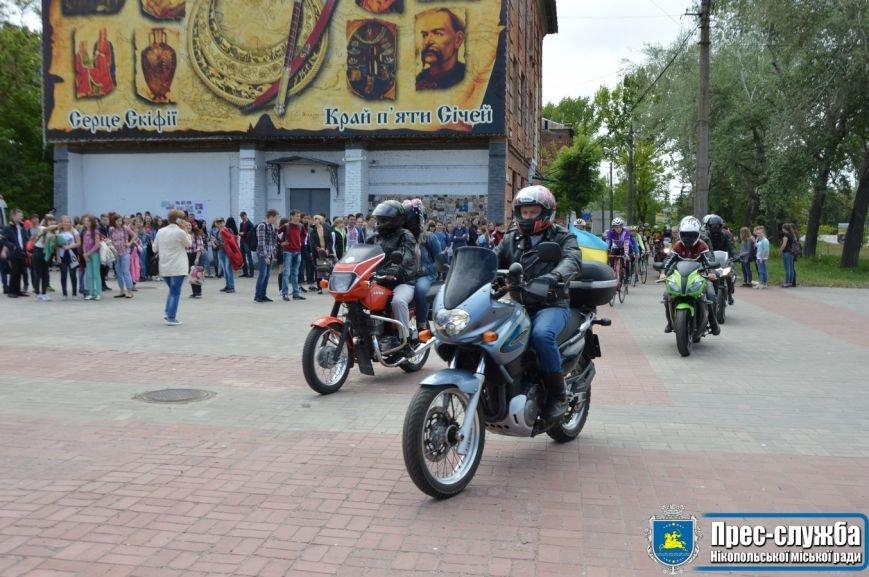 """Никопольчане присоединилась к Всеукраинского флешмоба """"Украина за безопасность дорожного движения, фото-3"""