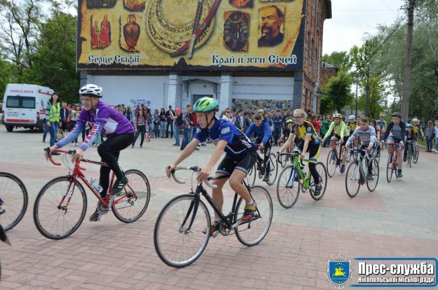 """Никопольчане присоединилась к Всеукраинского флешмоба """"Украина за безопасность дорожного движения, фото-2"""