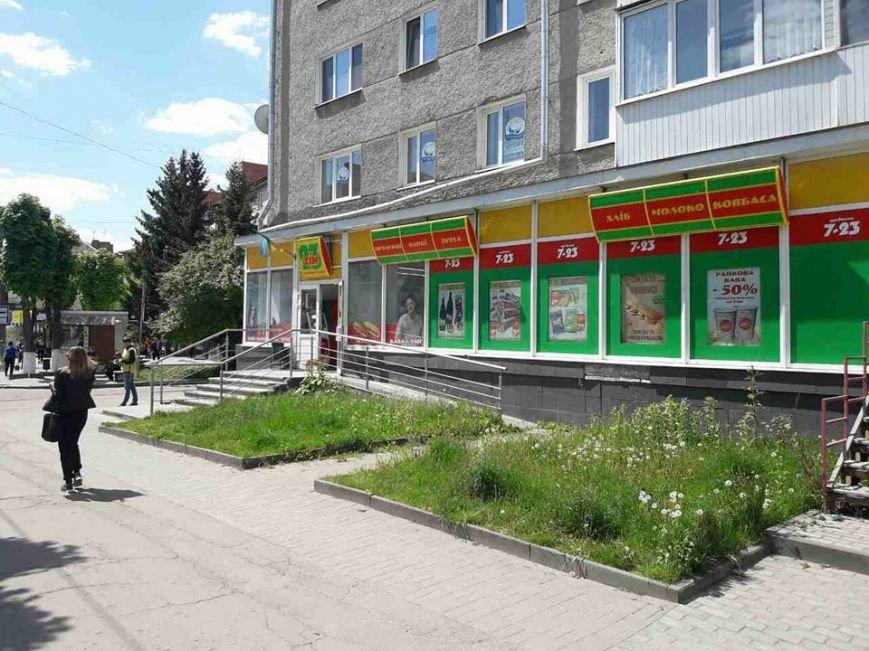 Луцьк: місто заросло травою (ФОТО), фото-6