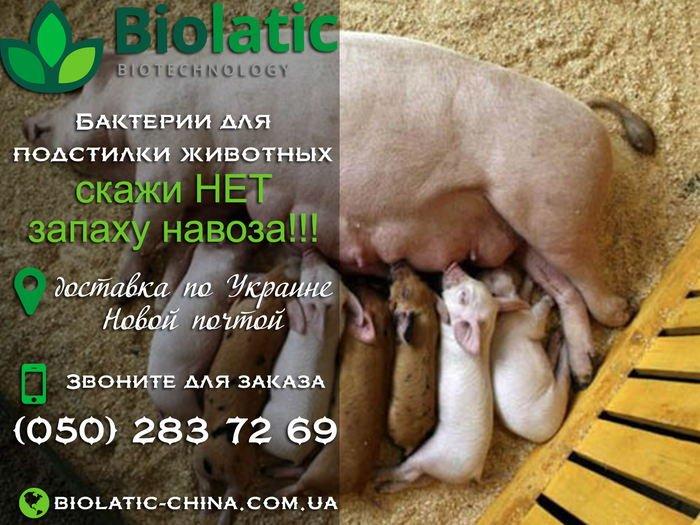 Подстилка ферментационная Биолатик для переработки навоза, фото-1