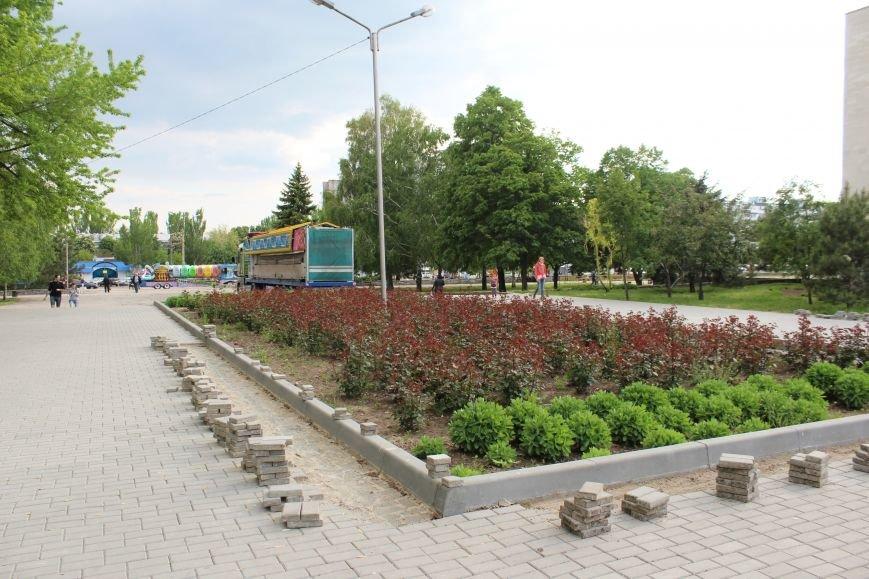 Реконструкция запорожского парка Гагарина началась почти год назад: что сделано, - ФОТО, фото-1