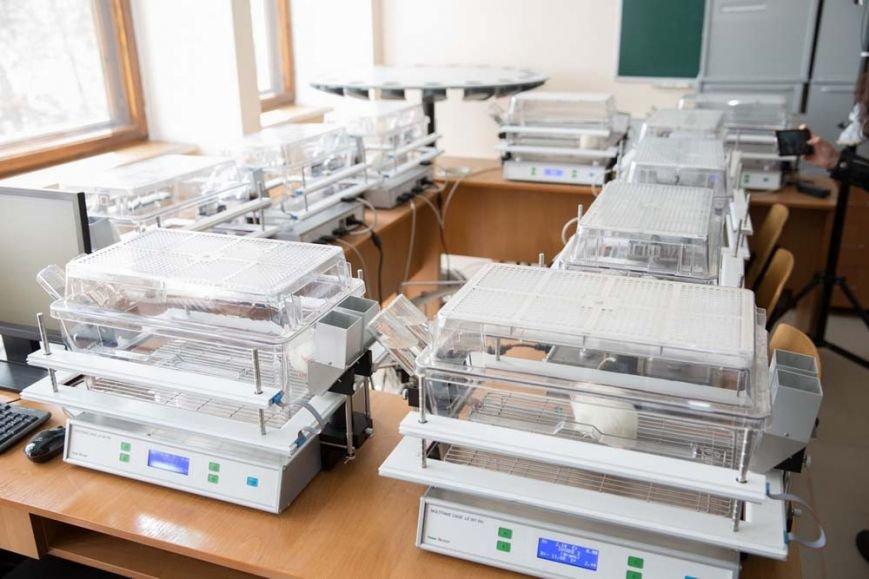 В КФУ создан первый Центр коллективного пользования, фото-5
