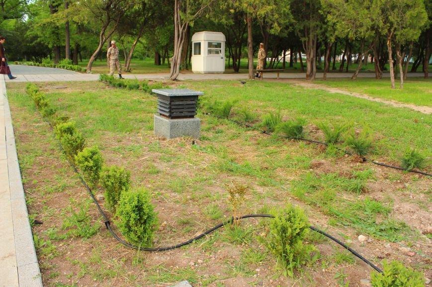 В Екатерининском саду Симферополя появятся клумбы с розами и кусты можжевельника (ФОТО), фото-3
